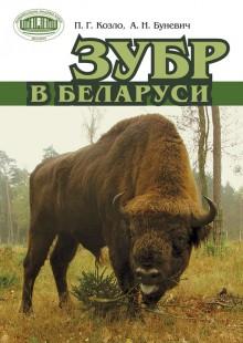 Обложка книги  - Зубр в Беларуси