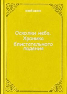 Обложка книги  - Осколки неба. Хроника блистательного падения