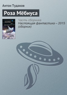 Обложка книги  - Роза Мёбиуса