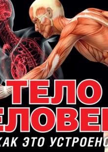 Обложка книги  - Тело человека