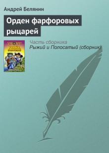 Обложка книги  - Орден фарфоровых рыцарей