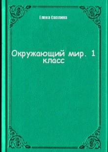Обложка книги  - Окружающий мир. 1 класс