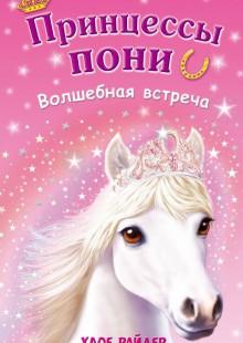 Обложка книги  - Волшебная встреча