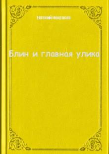 Обложка книги  - Блин и главная улика