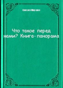 Обложка книги  - Что такое перед нами? Книга-панорама