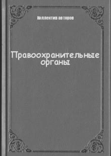 Обложка книги  - Правоохранительные органы