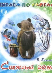 Обложка книги  - Снежный дом
