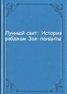 Обложка книги  - Лунный свет: История рабджам Зая-пандиты