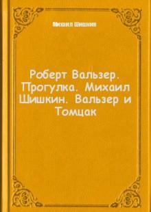 Обложка книги  - Роберт Вальзер. Прогулка. Михаил Шишкин. Вальзер и Томцак