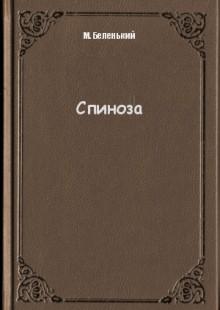 Обложка книги  - Спиноза