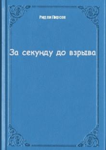 Обложка книги  - За секунду до взрыва