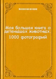 Обложка книги  - Моя большая книга о детенышах животных. 1000 фотографий