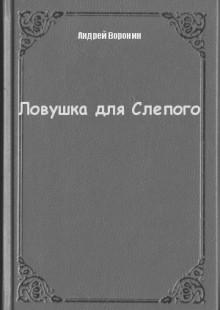 Обложка книги  - Ловушка для Слепого