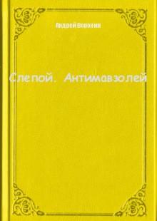 Обложка книги  - Слепой. Антимавзолей