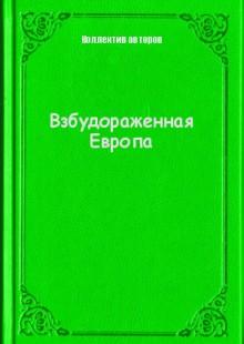 Обложка книги  - Взбудораженная Европа