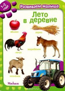 Обложка книги  - Лето в деревне