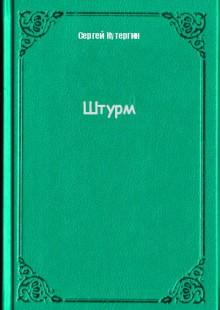 Обложка книги  - Штурм