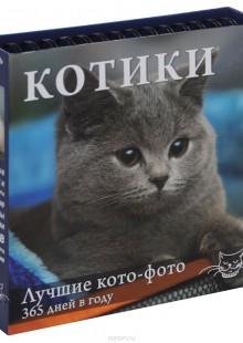 Обложка книги  - Календарь настольный (на спирали). Котики