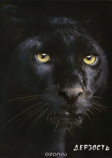 Обложка книги  - Блокнот настоящего хищника (Пантера)