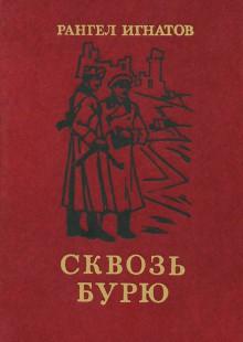 Обложка книги  - Сквозь бурю