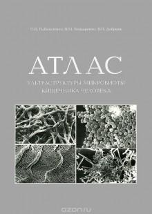 Обложка книги  - Атлас ультраструктуры микробиоты кишечника человека