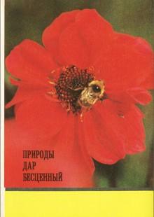 Обложка книги  - Природы дар бесценный