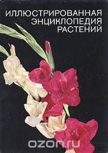 Обложка книги  - Иллюстрированная энциклопедия растений