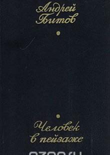 Обложка книги  - Человек в пейзаже