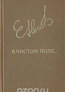 Обложка книги  - В чистом поле…
