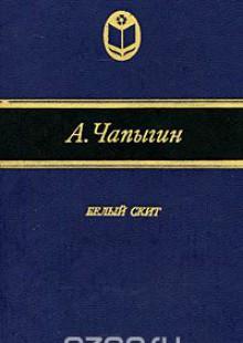 Обложка книги  - Белый скит