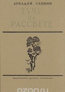 Обложка книги  - Тучи на рассвете