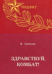 Обложка книги  - Здравствуй, комбат!