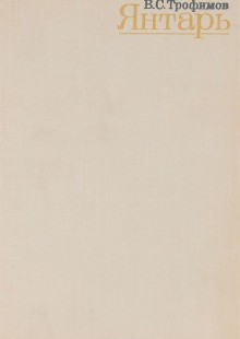 Обложка книги  - Янтарь