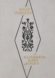 Обложка книги  - У тальников, близ дороги