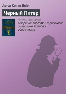Обложка книги  - Черный Питер