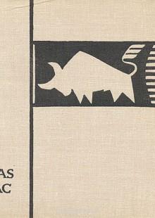 Обложка книги  - Каунас