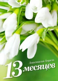 Обложка книги  - 13месяцев