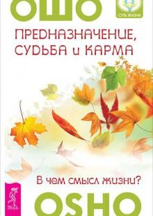Обложка книги  - Предназначение, судьба и карма. В чем смысл жизни?