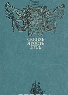 Обложка книги  - Сквозь ярость бурь
