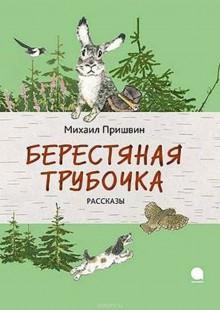 Обложка книги  - Берестяная трубочка
