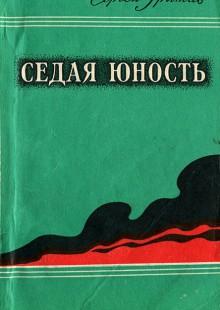 Обложка книги  - Седая юность