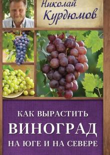 Обложка книги  - Как вырастить виноград на Юге и на Севере