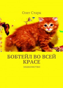 Обложка книги  - Бобтейл вовсей красе. знакомство