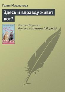 Обложка книги  - Здесь и вправду живет кот?