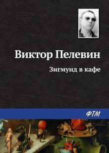 Обложка книги  - Зигмунд в кафе