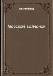 Обложка книги  - Морской волчонок