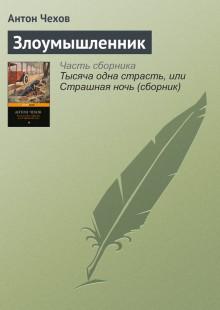Обложка книги  - Злоумышленник