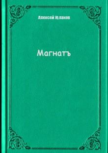 Обложка книги  - Магнатъ